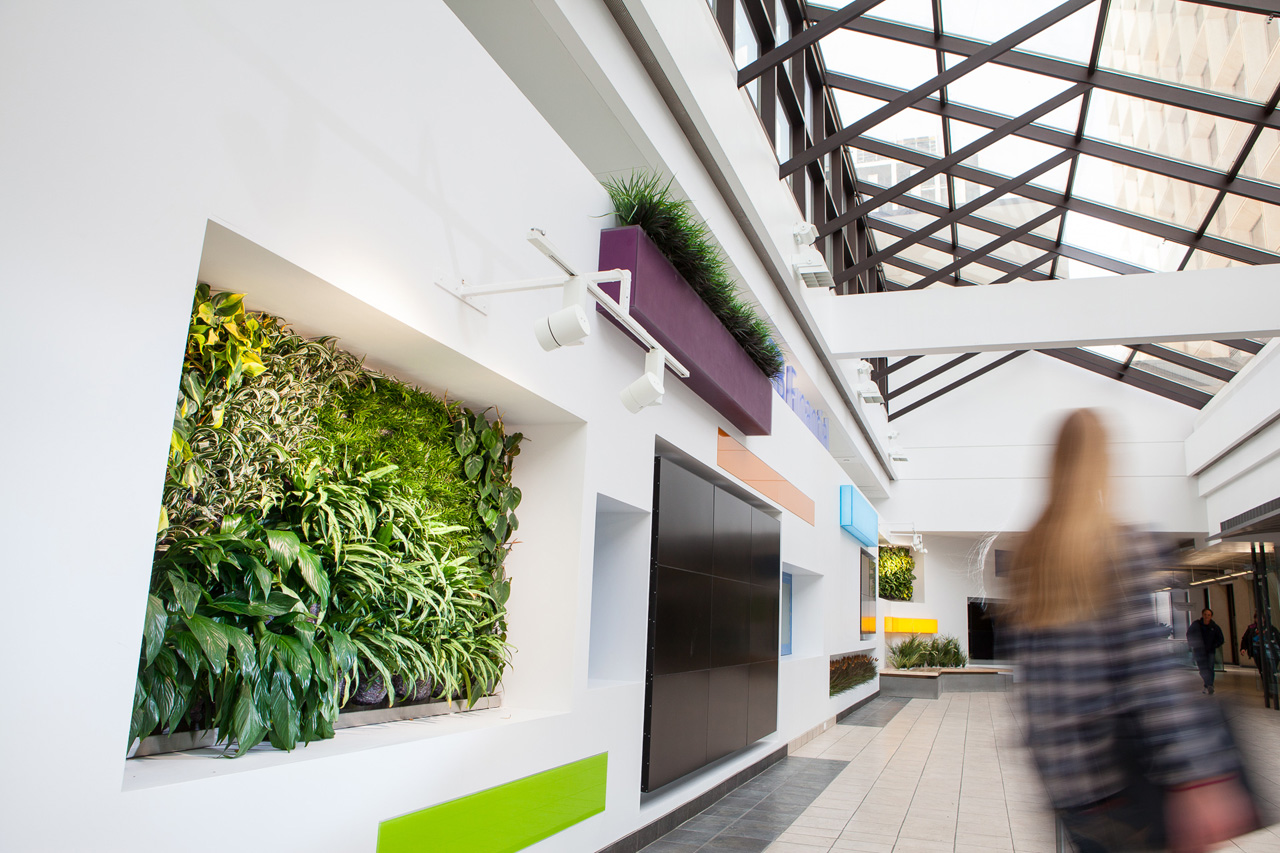 Living wall in white hallway.