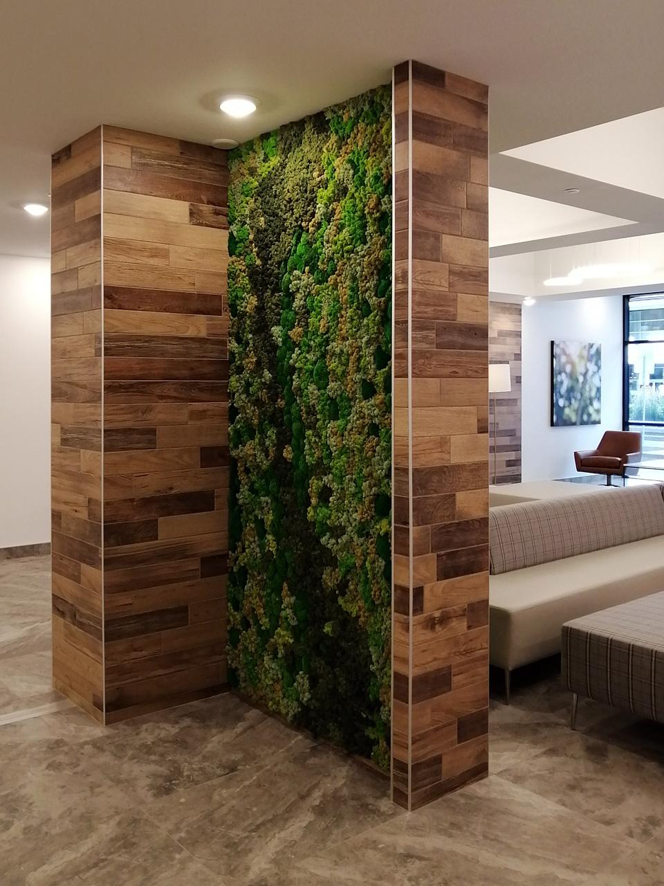 Vertical green moss wall in an Edmonton office