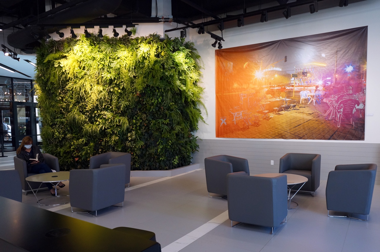 Hydroponic Living Wall