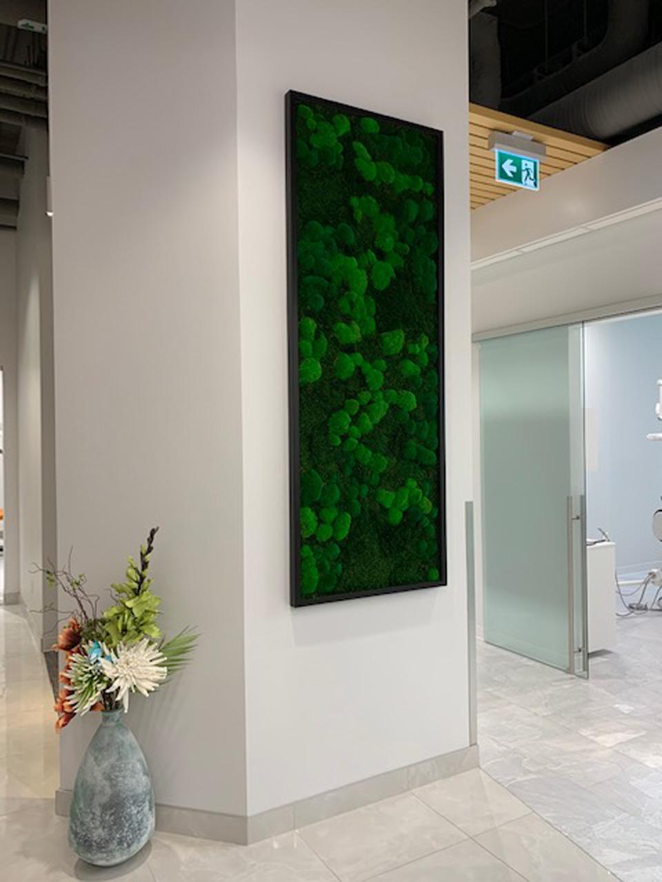 District Dental Moss Art
