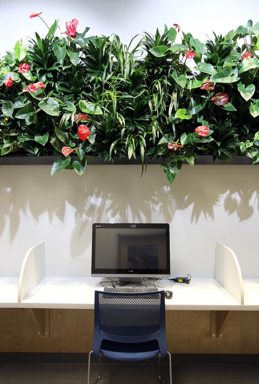 EPSB Living Wall