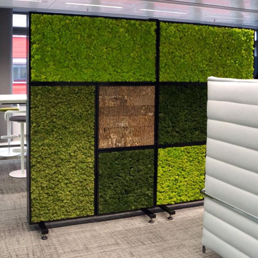 GreenScreen2