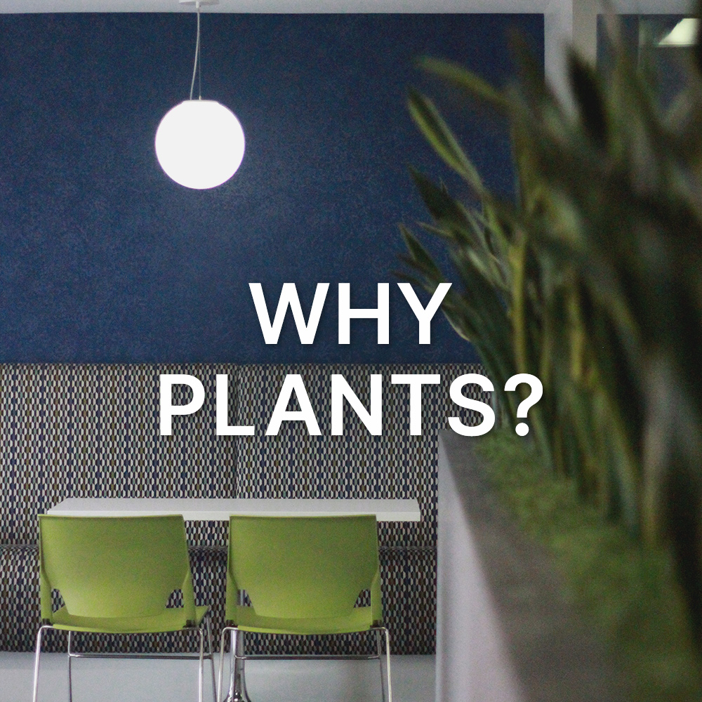 Why Plants?