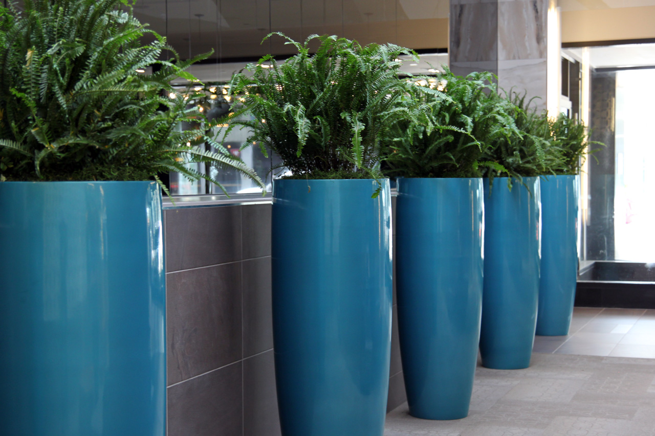 Tropical plants and the colour blue are key features of Biophilic design