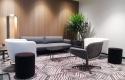 Biophilic design in reception area