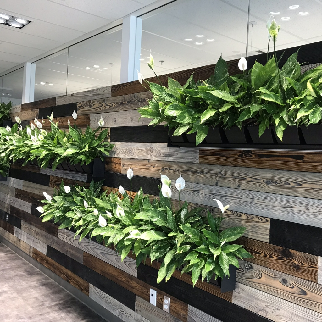 Biophilic Design. Wood paneling with Living wall full of Peace Lilies.
