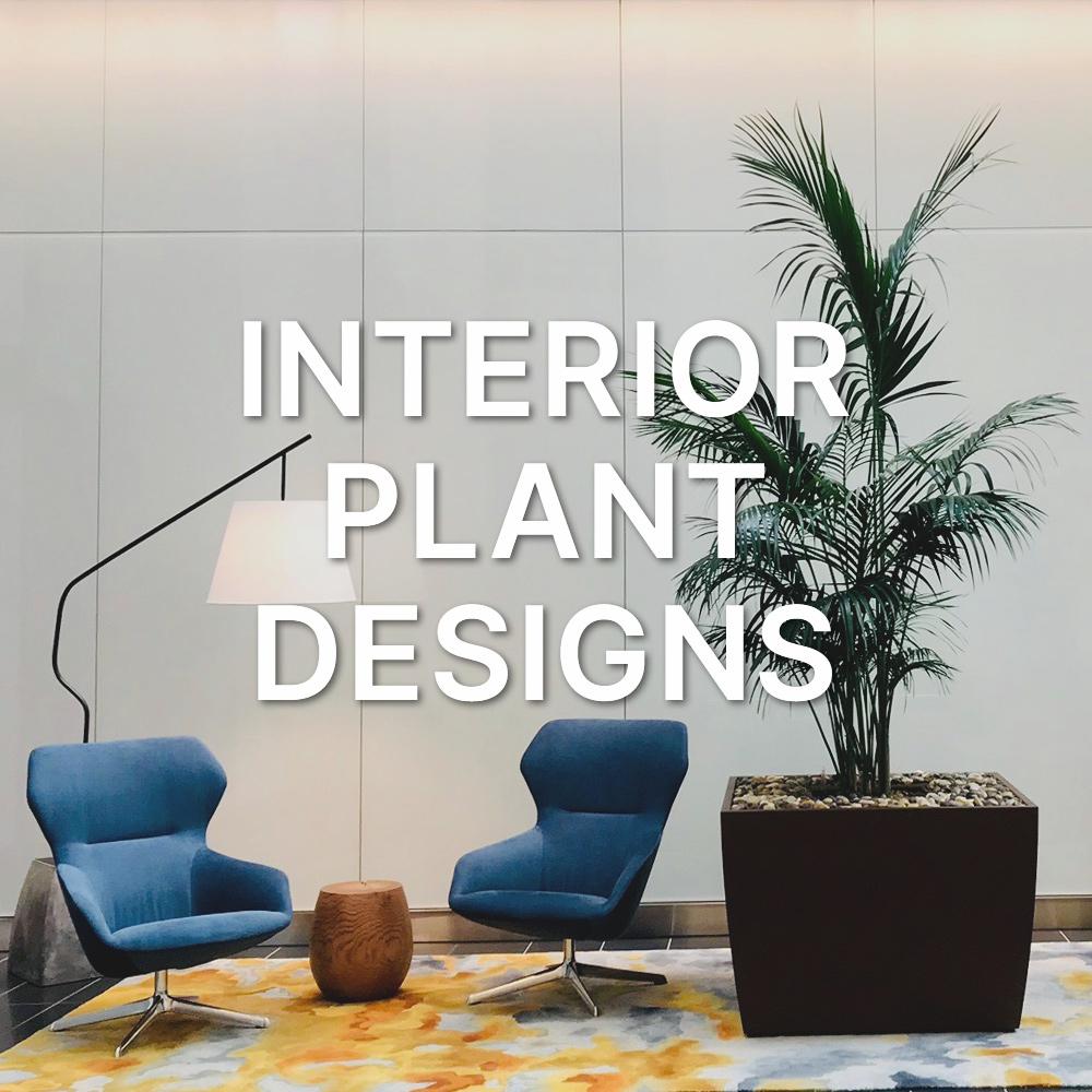 Interior Plant Designs