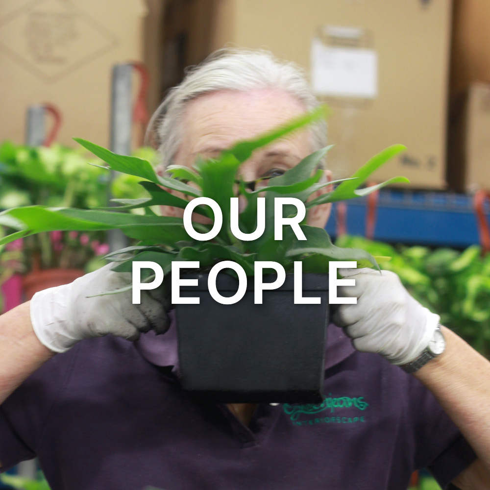 Our People